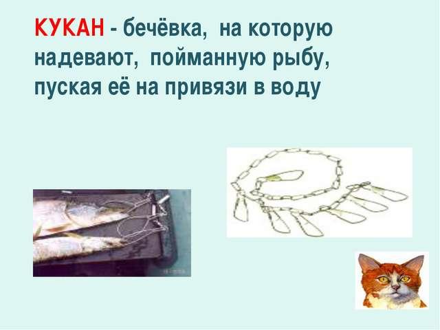 КУКАН - бечёвка, на которую надевают, пойманную рыбу, пуская её на привязи в...