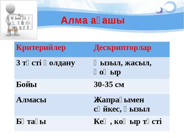 Алма ағашы КритерийлерДескрипторлар 3 түсті қолдануҚызыл, жасыл, қоңыр Бойы...