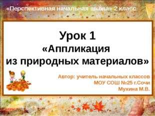 Урок 1 «Аппликация из природных материалов» «Перспективная начальная школа» 2