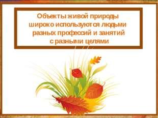 http://aida.ucoz.ru Объекты живой природы широко используются людьми разных