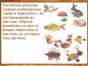 http://aida.ucoz.ru Рассмотри рисунки. Сравни изображения гриба и животных с
