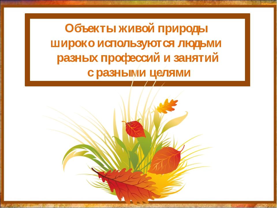 http://aida.ucoz.ru Объекты живой природы широко используются людьми разных...