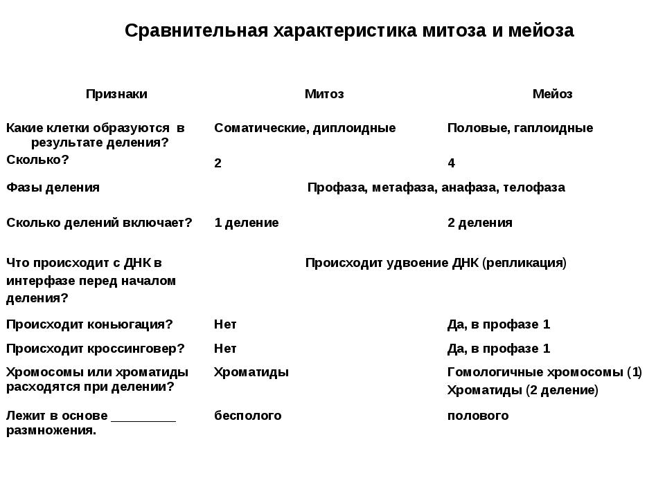 Сравнительная характеристика митоза и мейоза ПризнакиМитозМейоз Какие клетк...