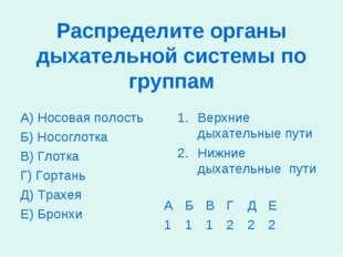 Распределите органы дыхательной системы по группам А) Носовая полость Б) Носо