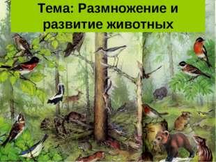 Тема: Размножение и развитие животных