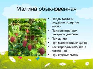 Малина обыкновенная Плоды малины содержат эфирное масло Применяются при сахар