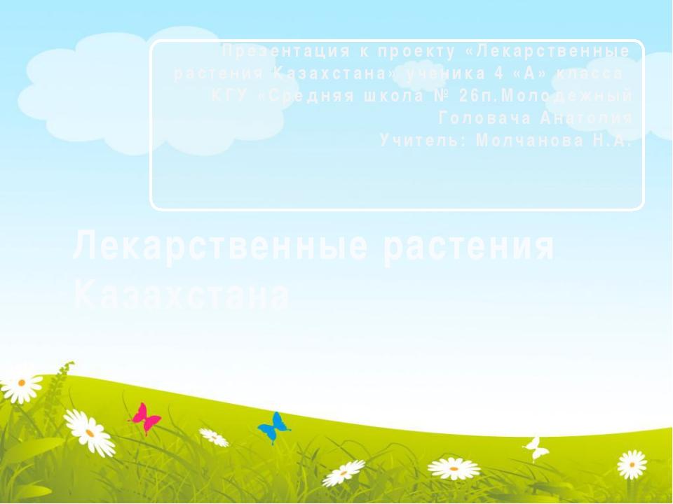 Лекарственные растения Казахстана Презентация к проекту «Лекарственные расте...