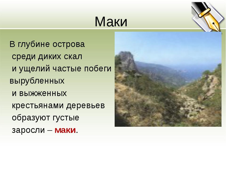 Маки В глубине острова среди диких скал и ущелий частые побеги вырубленных и...