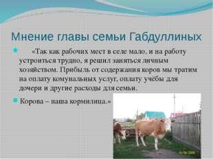 Мнение главы семьи Габдуллиных «Так как рабочих мест в селе мало, и на работу