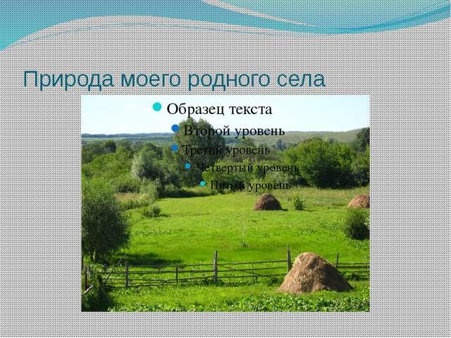 Природа моего родного села