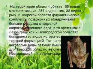 На территории области обитает 66 видов млекопитающих, 257 видов птиц, 38 вид