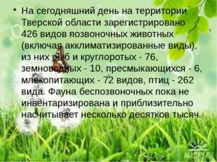 На сегодняшний день на территории Тверской области зарегистрировано 426 видо