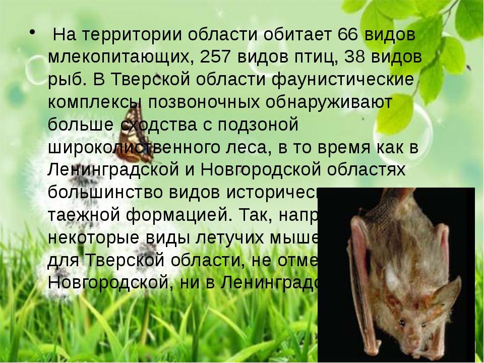 На территории области обитает 66 видов млекопитающих, 257 видов птиц, 38 вид...