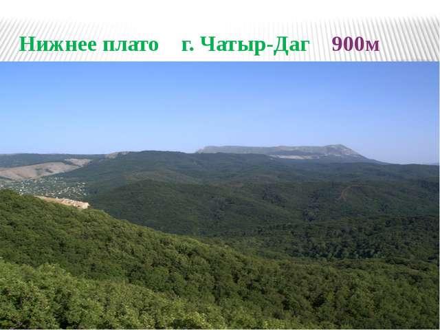 Нижнее плато г. Чатыр-Даг 900м