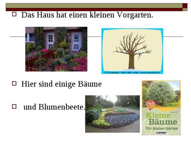 Das Haus hat einen kleinen Vorgarten. Hier sind einige Bäume und Blumenbeete.