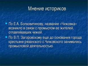 Мнение историков По Е.А. Болховитинову, название «Чижовка» возникло в связи