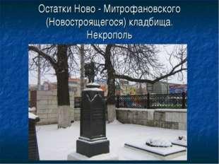 Остатки Ново - Митрофановского (Новостроящегося) кладбища. Некрополь