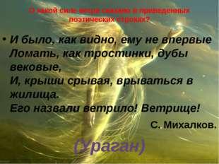 О какой силе ветра сказано в приведенных поэтических строках? И было, как вид