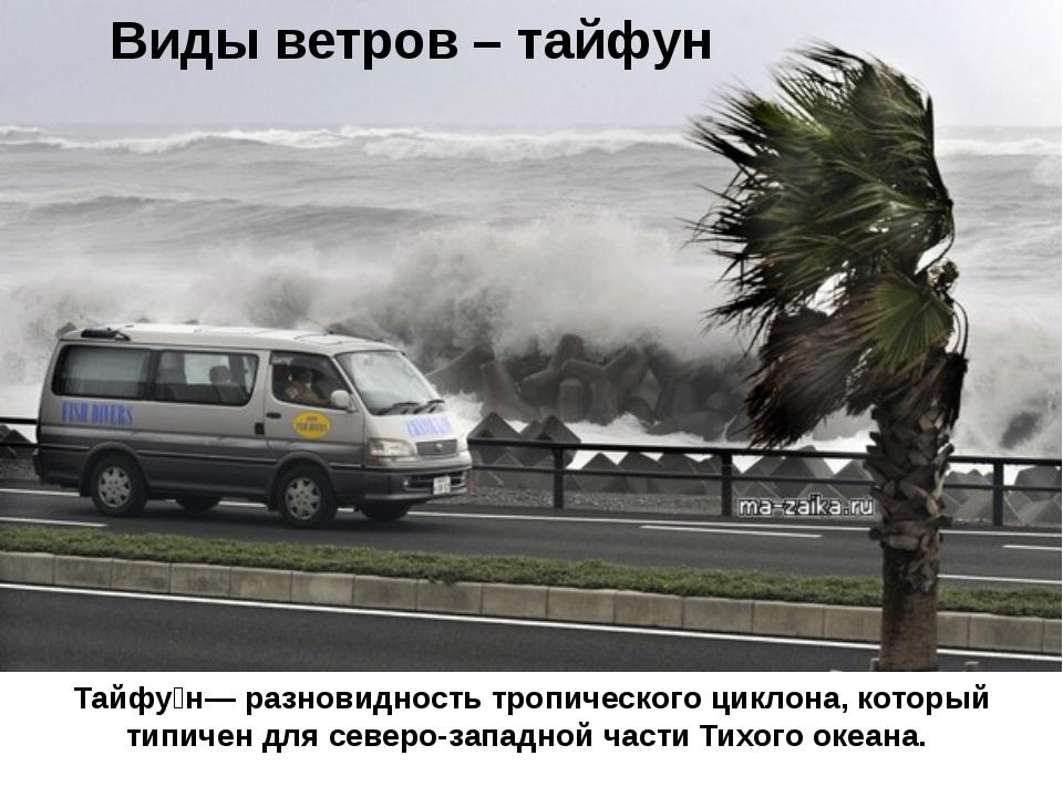 Виды ветров – тайфун Тайфу́н— разновидность тропического циклона, который тип...