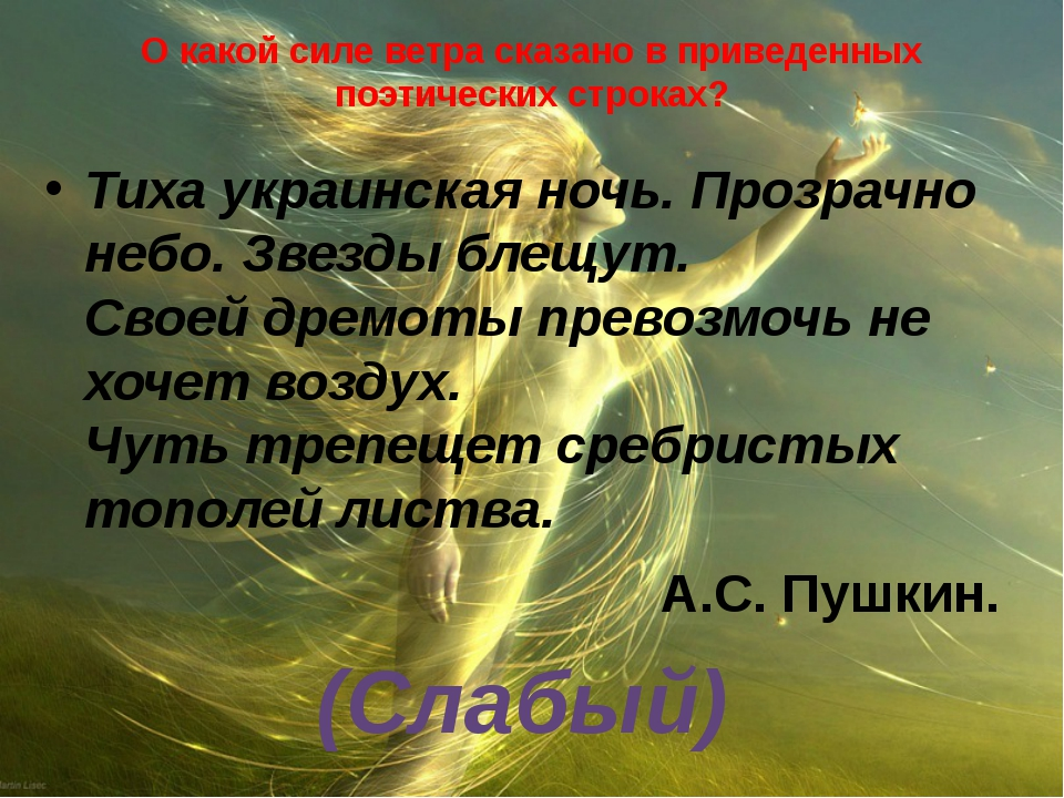 О какой силе ветра сказано в приведенных поэтических строках? Тиха украинская...