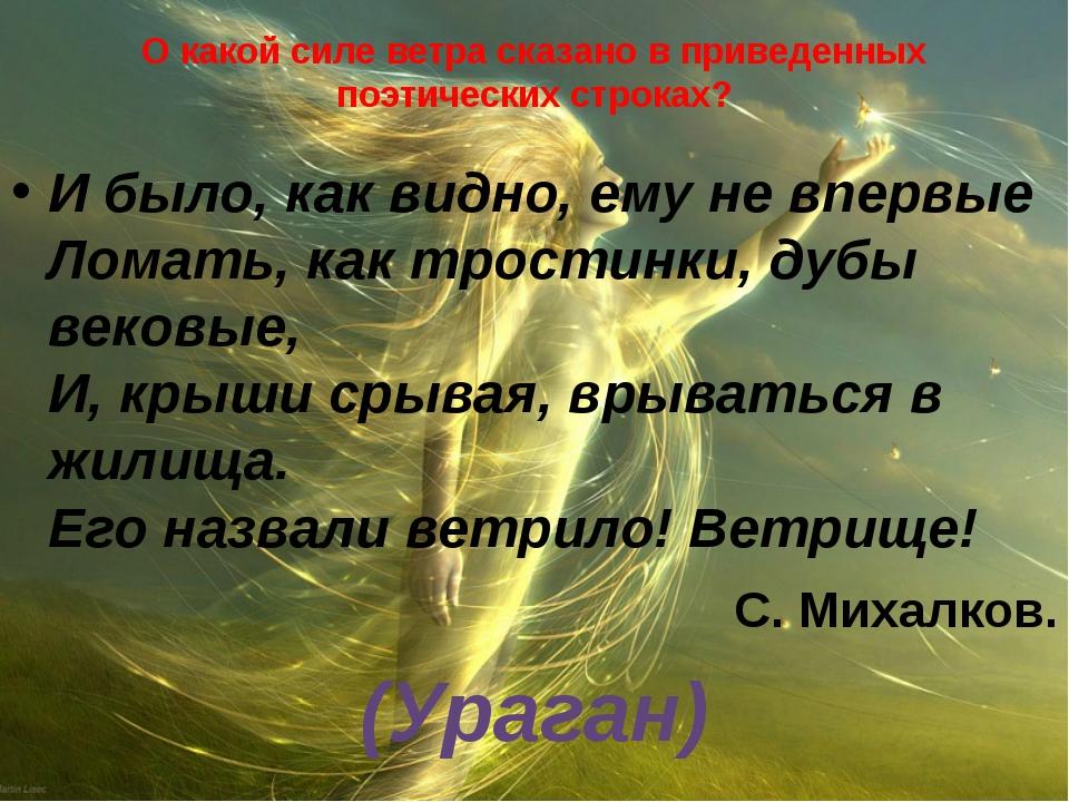 О какой силе ветра сказано в приведенных поэтических строках? И было, как вид...