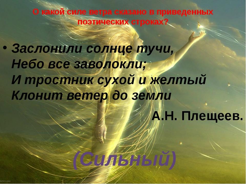 О какой силе ветра сказано в приведенных поэтических строках? Заслонили солнц...
