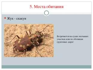5. Места обитания Жук - скакун Встречается на сухих песчаных участках или по