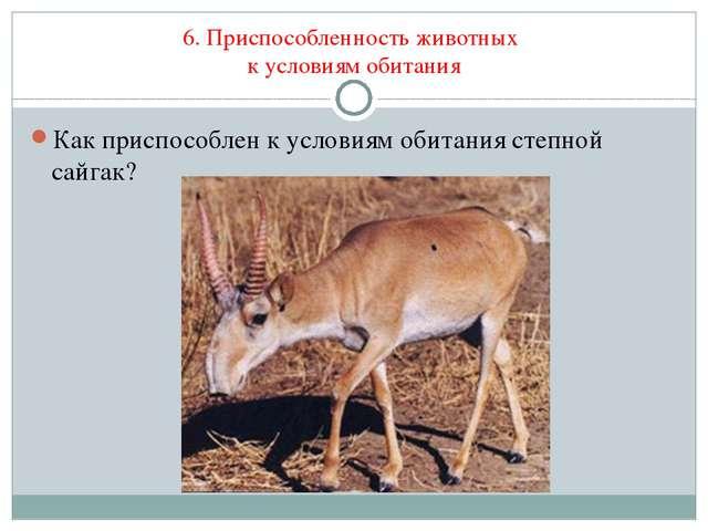 6. Приспособленность животных к условиям обитания Как приспособлен к условиям...