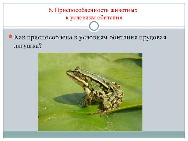 6. Приспособленность животных к условиям обитания Как приспособлена к условия...