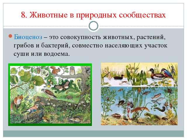 8. Животные в природных сообществах Биоценоз – это совокупность животных, рас...