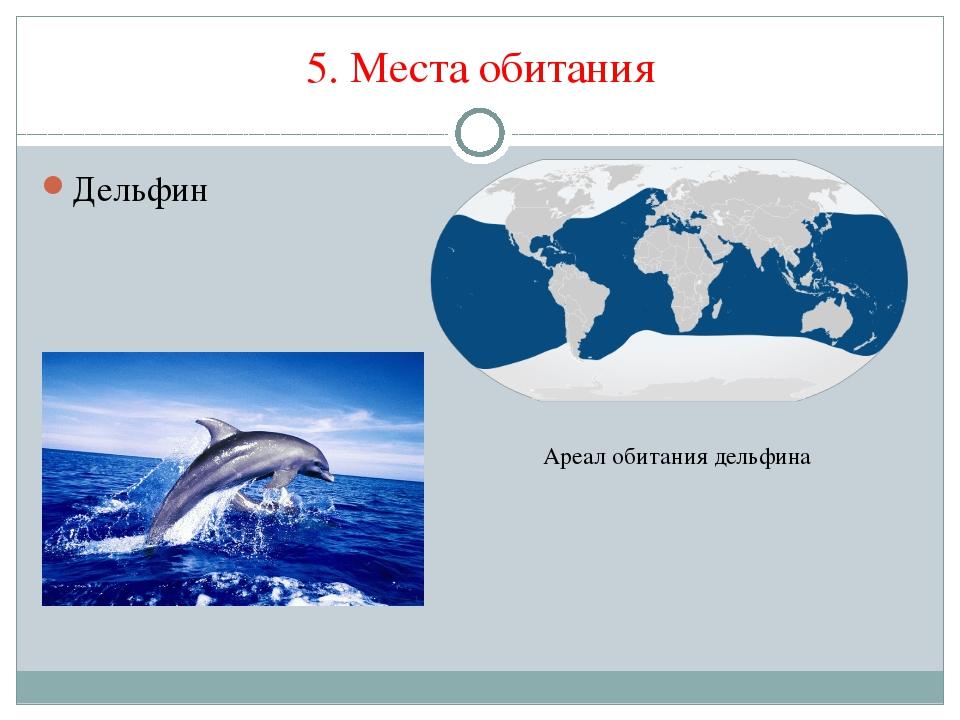 5. Места обитания Дельфин Ареал обитания дельфина