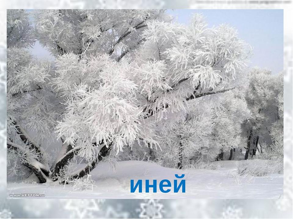 Не снег, не лед, а серебром деревья уберет. иней