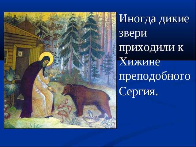 Иногда дикие звери приходили к Хижине преподобного Сергия.