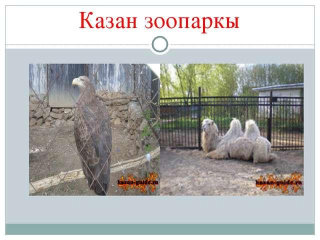 Казан зоопаркы