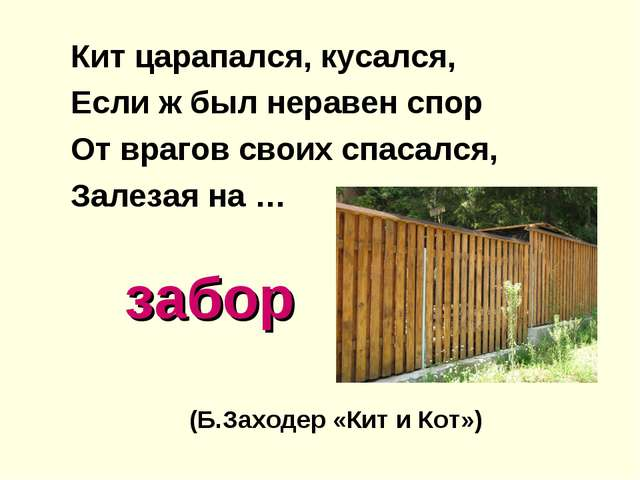 забор Кит царапался, кусался, Если ж был неравен спор От врагов своих спасал...