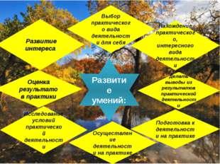 « Развитие интереса Нахождение практического, интересного вида деятельности И