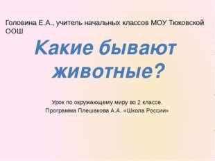 Урок по окружающему миру во 2 классе. Программа Плешакова А.А. «Школа России»