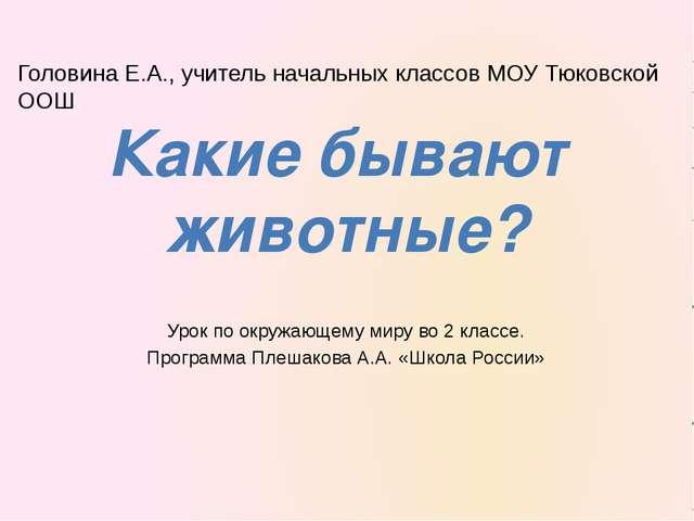 Урок по окружающему миру во 2 классе. Программа Плешакова А.А. «Школа России»...