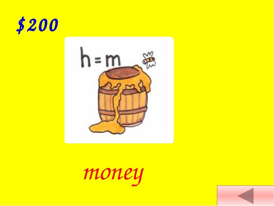 $300 house