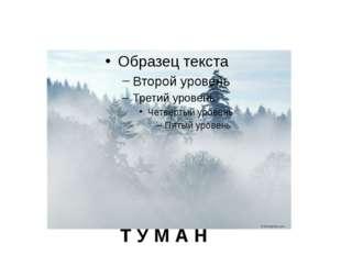 Т У М А Н