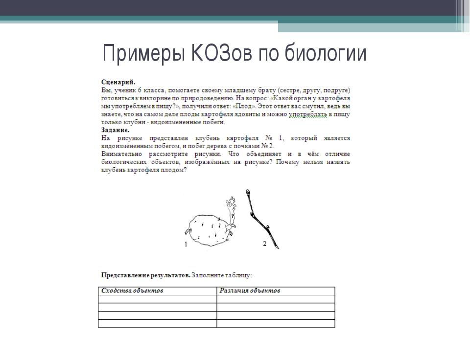 Примеры КОЗов по биологии