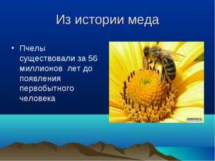 Из истории меда Пчелы существовали за 56 миллионов лет до появления первобытн