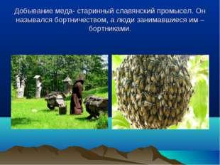 Добывание меда- старинный славянский промысел. Он назывался бортничеством, а
