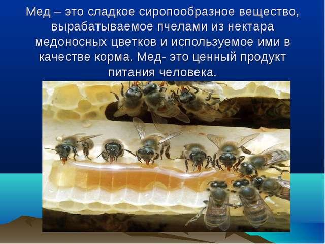 Мед – это сладкое сиропообразное вещество, вырабатываемое пчелами из нектара...