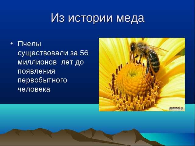Из истории меда Пчелы существовали за 56 миллионов лет до появления первобытн...