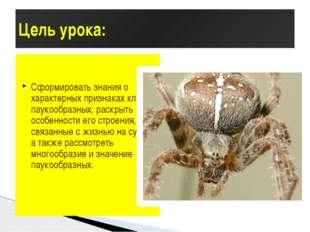 Цель урока: Сформировать знания о характерных признаках класса паукообразных;