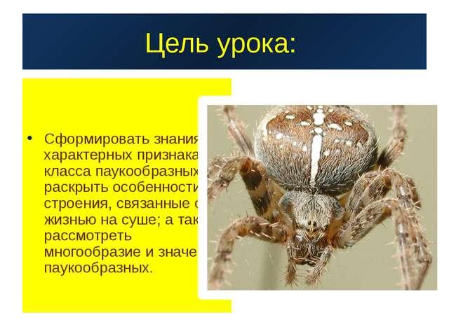 Цель урока: Сформировать знания о характерных признаках класса паукообразных;...