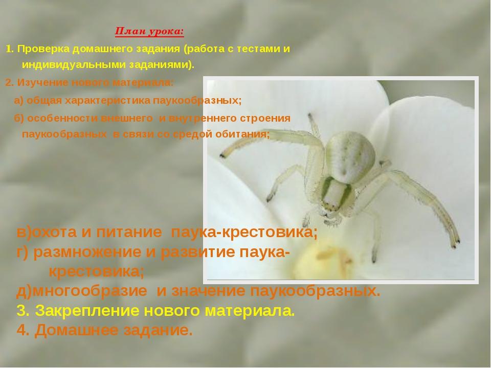 План урока: 1. Проверка домашнего задания (работа с тестами и индивидуальными...