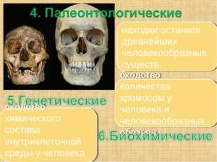 находки останков древнейших человекообразных существ. сходство количества хро