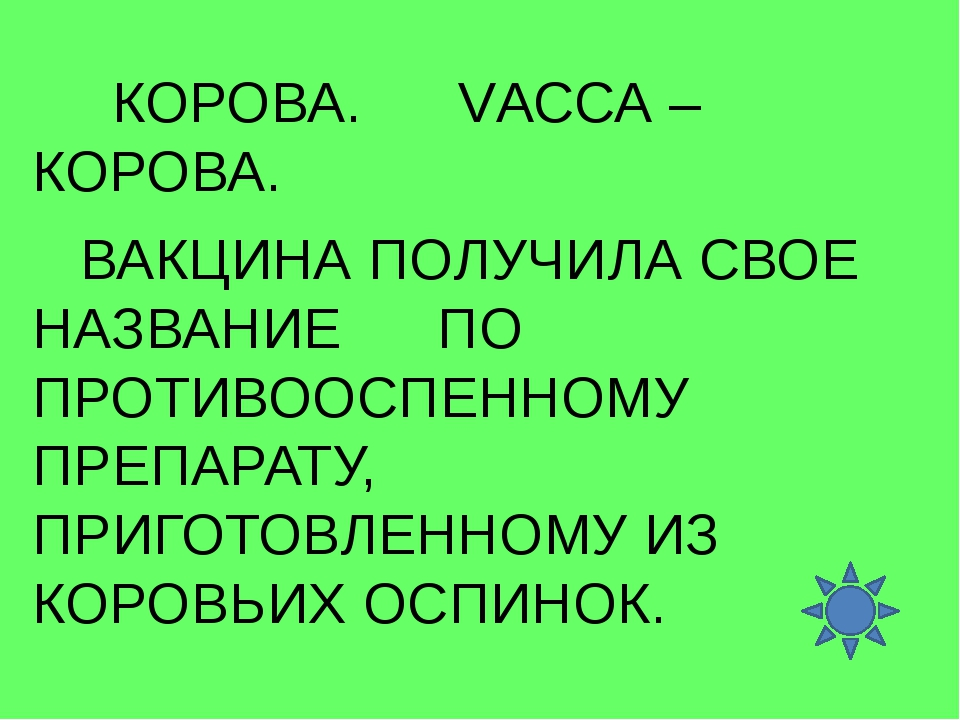 КОРОВА. VАССА – КОРОВА. ВАКЦИНА ПОЛУЧИЛА СВОЕ НАЗВАНИЕ ПО ПРОТИВООСПЕННОМУ П...